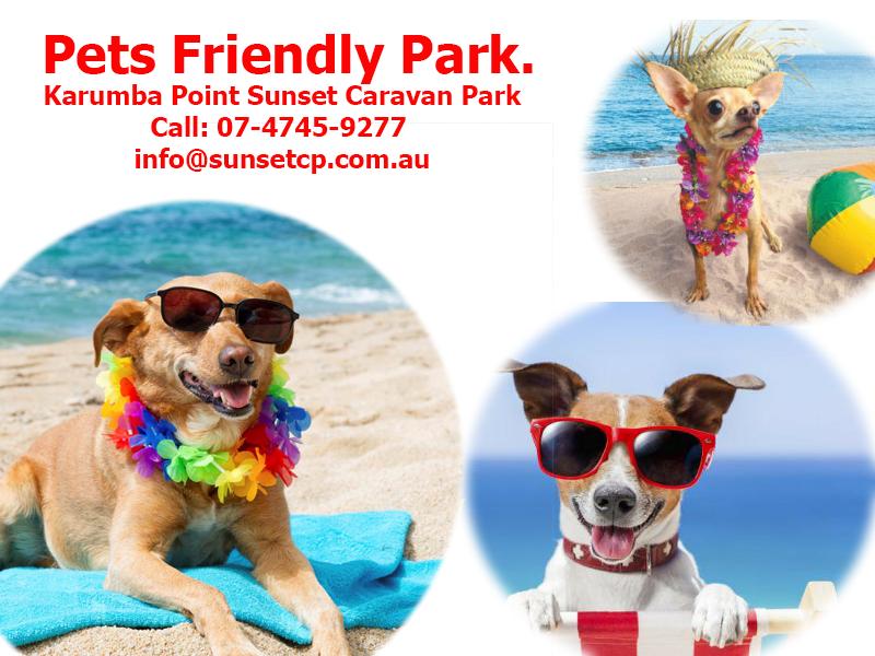 Karumba Point Sunset Caravan Park Pets Friendly Park Beautiful Place
