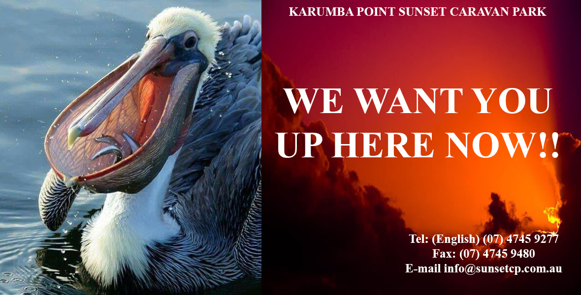 Pelican_Karumba_Point_Sunset_Caravan_Park