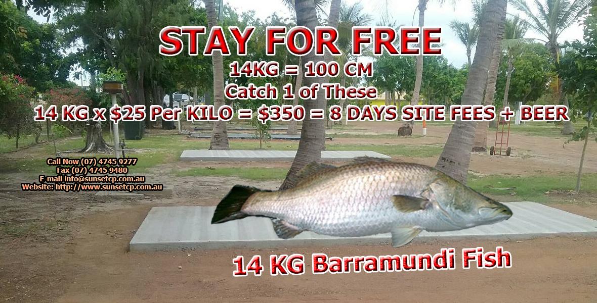 Karumba Point Sunset Caravan Park Accommodation Hotels Cabins Birds Watching Kangaroo Barramundi Fishing Fish Booking