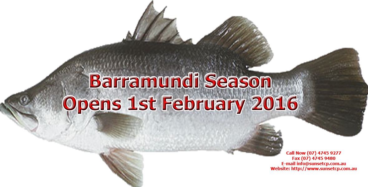 Opens 1st February 2016 Barramundi Fishing On Table Karumba Point Sunset Caravan Park 02
