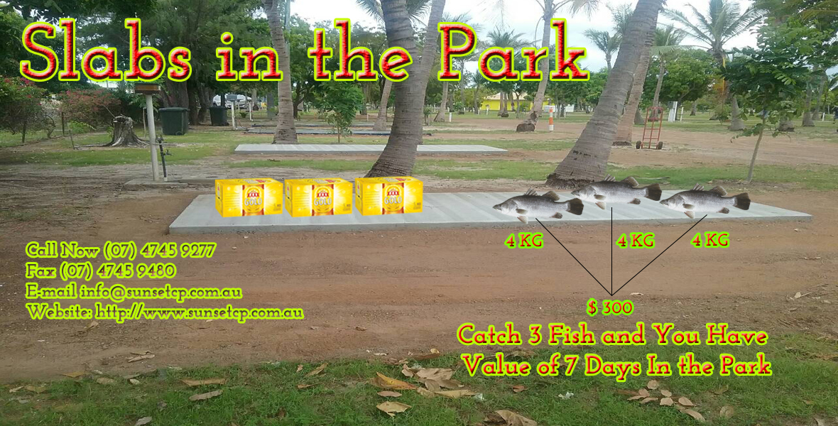Slabs 4XXXX In The Park Accommodation Hotels Birds Fishing Karumba Point Caravan Park Opt 07