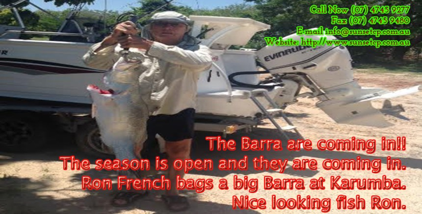 The-Barra-are-coming-in-Karumba-Point-Sunset-Caravan-Park-Cabins-Hotels-Accommodation-1