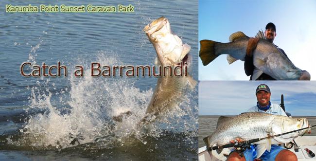 Barramundi_Fishing