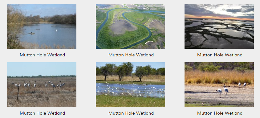 Mutton Hole Wetland