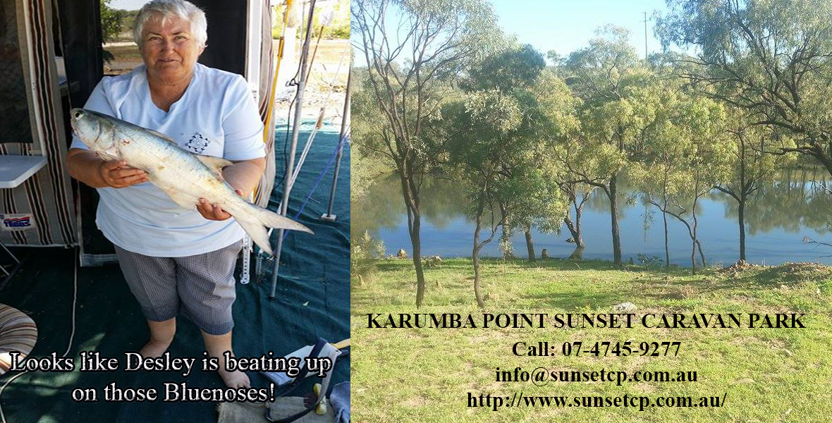Looks like Desley is beating up on those Bluenoses! Karumba Point Sunset Caravan Park-Recovered
