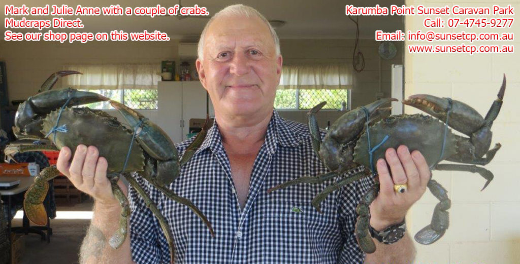 Mudcrabs Direct in Karumba. Tell Mark arch sent you