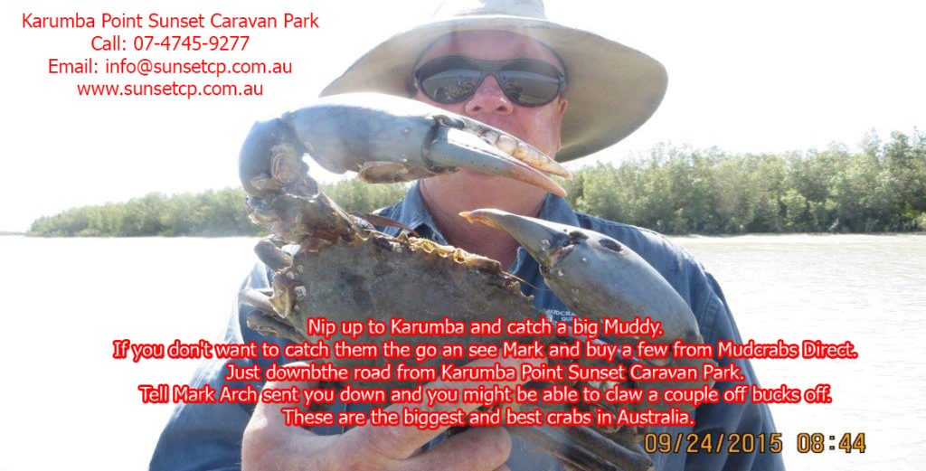 Nip up to Karumba and catch a big Muddy-Recovered