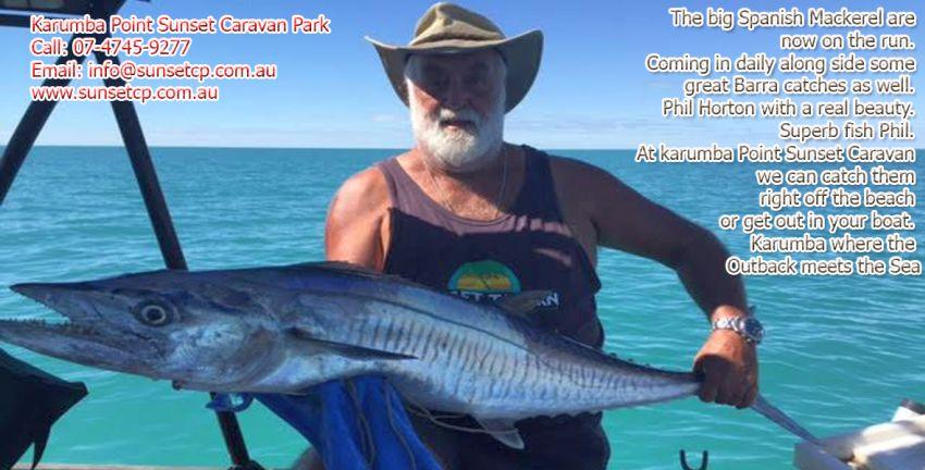 The big Spanish Mackerel are now on the run