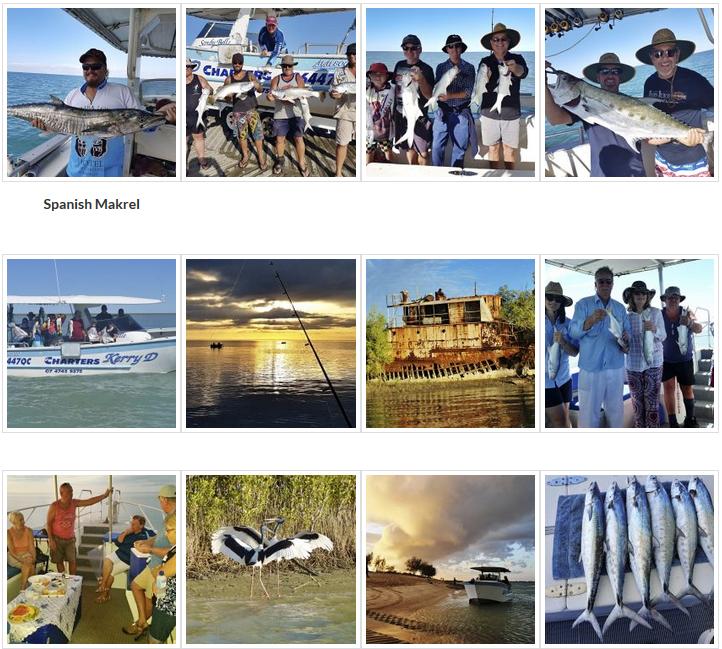 barramundi-grunter-salmon-jew-shark-bream-mackerel-queenies-fingermark