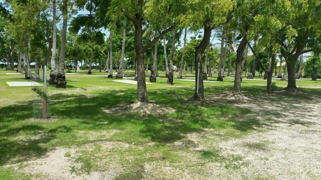 Park Established Slabs Area