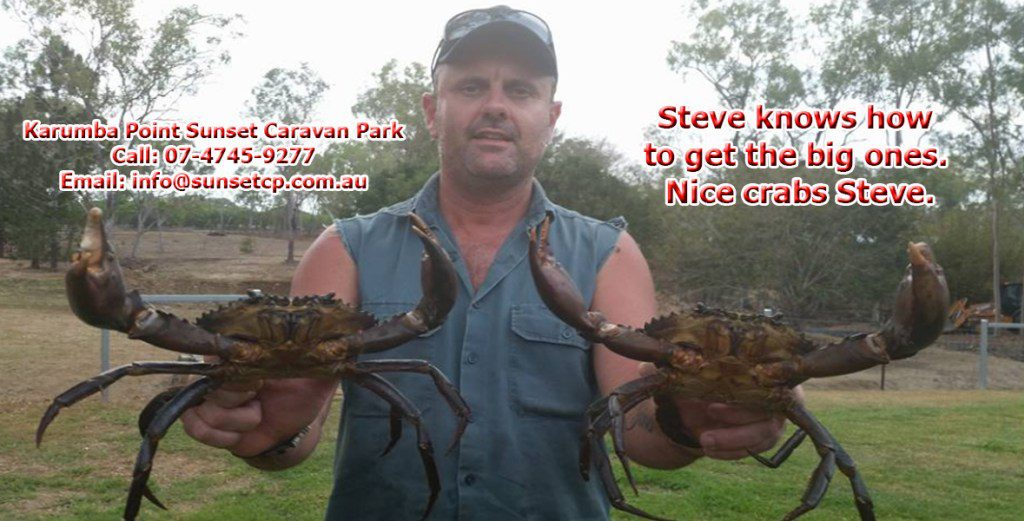 Steve-knows-how-to-get-the-big-ones.-Nice-crabs-Steve.