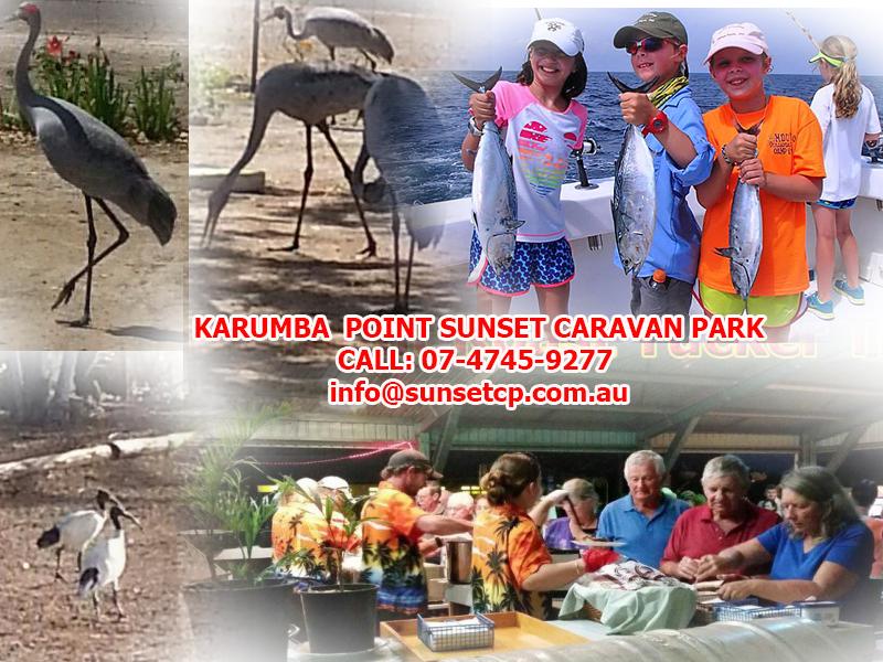 Karumba Point Sunset Caravan Park Holidays Children ActivitiesKarumba Point Sunset Caravan Park Holidays Children Activities