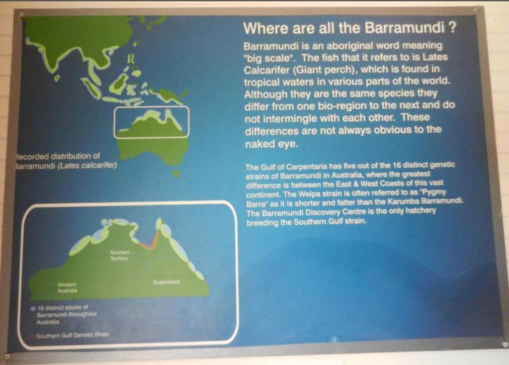 Barramundi Center Tripadvisor Testimonial Karumba Point QLD Australia